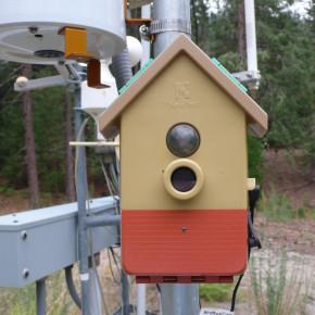 Citizen Sensing and Environmental Practice